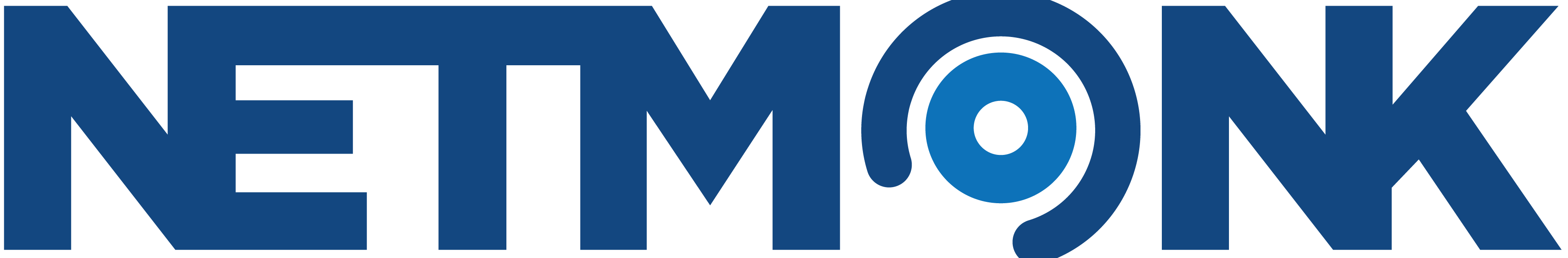 Netmonk Logo Icon